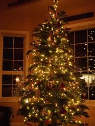 top christmas light ideas indoor. Marvelous Living Room Christmas Decorating Ideas Home Tags Image For Indoor Light Styles And Decorations Popular Top E