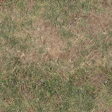 Dirt And Grass Texture Seamless Dirt And Grass Texture Seamless