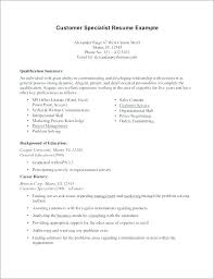 Resume Summary Of Qualifications Example Good Summary Of ...
