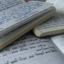 integrated essay sample with outline