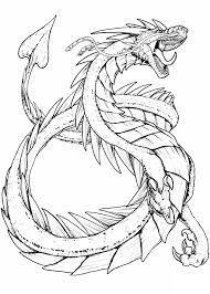 100 Tranh tô màu con rồng ideas in 2021 | dragon coloring page, coloring  pages, dragon drawing