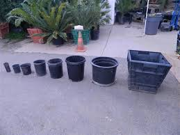 Nursery Container Sizes Chart Plant_container_sizes_and_descriptions