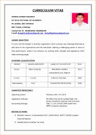 Resume Form Oloschurchtp Com