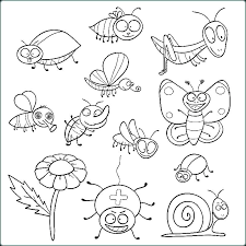 printable insect coloring pages preschool insects color free bugs colorin