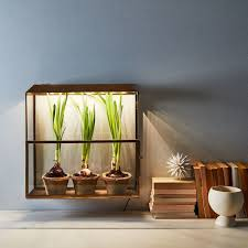 plants for windowless office. that means if you are super committed to growing a bunch of succulents in your windowless bedroom youu0027re going have consider using an artificial plants for office