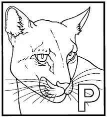Small Picture Panther coloring page Animals Town animals color sheet