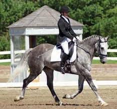 Ralph Robinson and Dr. Wendy Pearson of Horse Herbs and Canine Herbal  Supplements – Herbs for Horses