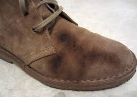 how to clean suede desert boots
