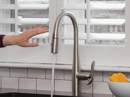 Kitchen Faucet  Shop Grohe Wexford Supersteel Infinity Handle - Kitchen faucet ideas