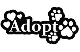 animal shelter clipart. Wonderful Shelter In Animal Shelter Clipart P