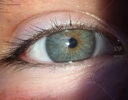 stock photo close up people light eye eyelashes eyeball