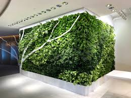 Living Walls | Botanical Designs