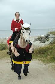 Pony Costume Ideas 260 Best Horse Costumes Fun Stuff Images On Pinterest Horses