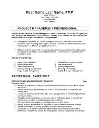 Software Engineer Resume Sample Career Director Of Software ...