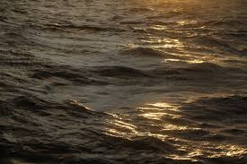 Image result for calm beneath the surface of the ocean