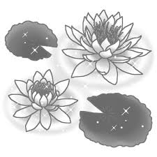 夏の花3睡蓮加工版モノクロ花イラストお花と季節のお礼状