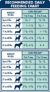 Blue Buffalo Large Breed Puppy Feeding Chart Life Protection Formula Dry Puppy Food Lamb Oatmeal