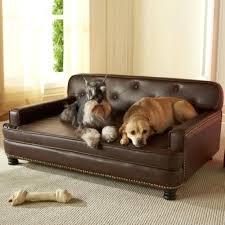 designer dog bed furniture. Plain Bed Stylish Dog Beds Bed Furniture Best Dogs Images On Cats Custom Pillows  And Cat For Designer Dog Bed Furniture