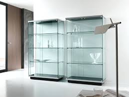 Furniture Display Cabinets For Collectibles Lovely Glass Display