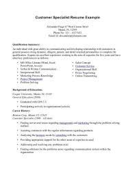 Professional Summary Resume Examples Customer Service Resume
