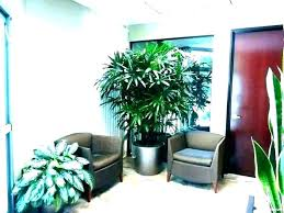 Full Size Of Enterprise Architecture Meaning In Urdu Architectural Digest  Day House Plants Home Depot Fake ...
