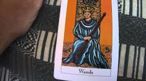 king of wands tarot card reading