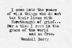 Wendell Berry, The Peace of Wild Things. I love Wendell Berry ...