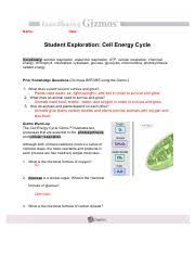 Cell Energy Flow Chart Photosynthesis And Cellular Respiration Answer Key Cell Energy Flow Review Photosynthesis And Respiration Doc