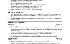 Engineering Resume Summary Eliolera Com