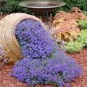 Поделки прикольные для сада и дачи
