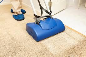 how to clean cowhide rug dog urine
