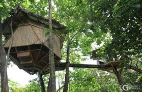 Treehouses In Costa RicaTreehouse Monteverde Costa Rica