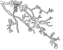 Small Picture blossom coloring pages