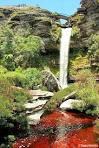 imagem de Rio Vermelho Minas Gerais n-19