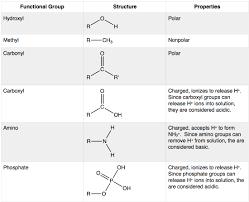 For Each Of The Functional Groups Complete The Chart 8 Functional Groups Biology Libretexts