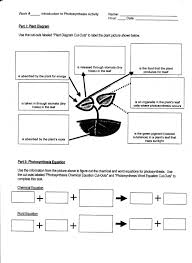 full size of worksheet comparing photosynthesis and cellular respiration worksheet inspiration of photosynthesis cellular respiration