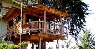 RECYCLED - This tree house in Belgium is built with recycled materials. We  would urge any would be tree dweller to consider re-using any old wood that  is to ...
