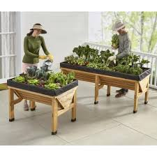the pest thwarting elevated garden