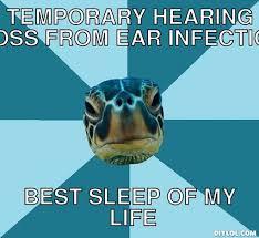 Sensory Sea Turtle Meme Generator - DIY LOL via Relatably.com
