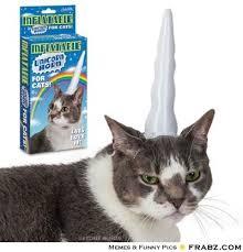 Unicorn Cat... - Meme Generator Funny via Relatably.com