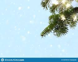 Holiday Branches With Lights Merry Christmas Snow And Fir Tree Branches With Holidays