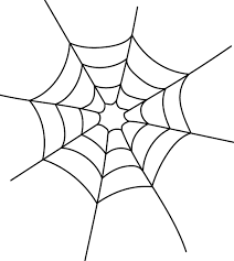 spider webs Archives - Carnegie Museum of Natural History