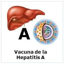 Resultado de imagen de imagenes de la hepatitis