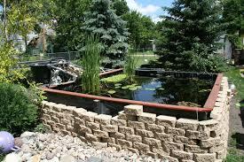 new guy building pond in louisville cky garden pond