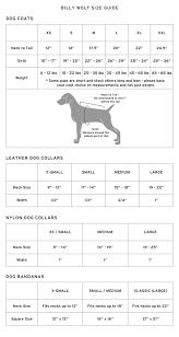 Wolf Vs Dog Size Chart Size Chart Billy Wolf