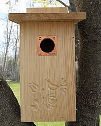 Bluebird House Bird House Cedar Bird House Sparrow Bird House Tree Swallow Bird House Mountain Bluebird Eastern Bluebird