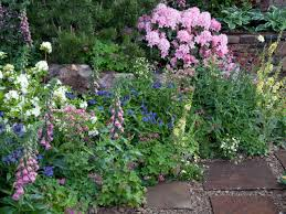 Small Picture Perennial Gardening HGTV