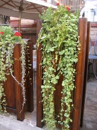 eco houses engaging diy vertical garden others greats plants for indoor decorating ideas for home design with wooden panels and grey rlooring beautiful