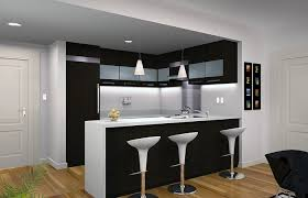Condo Kitchen Remodel Interior Unique Decorating Design