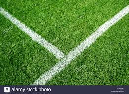 soccer field with a white line on top of green grass soccer11 green